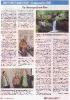 200306_Raiffeisenzeitung